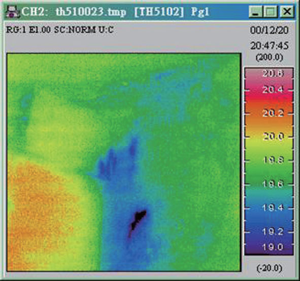 rapid infrared thermographic survey